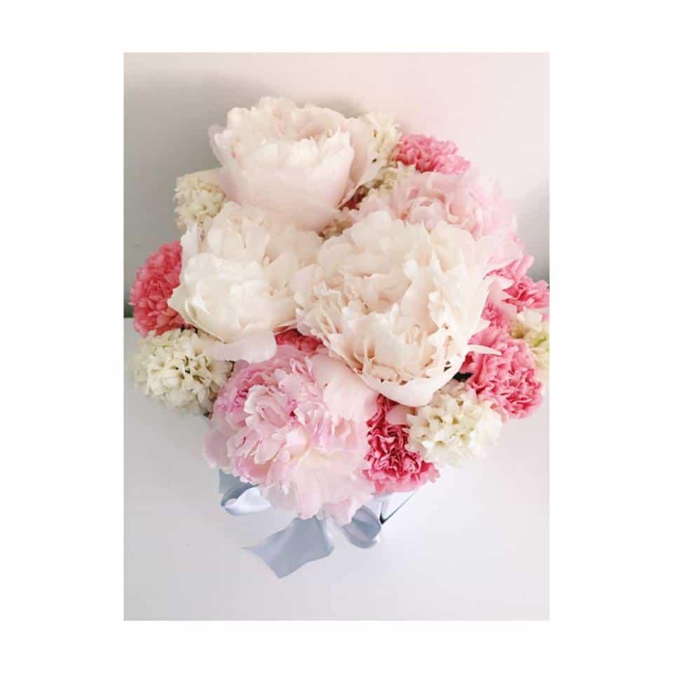 Božur cvjeće u kutiji