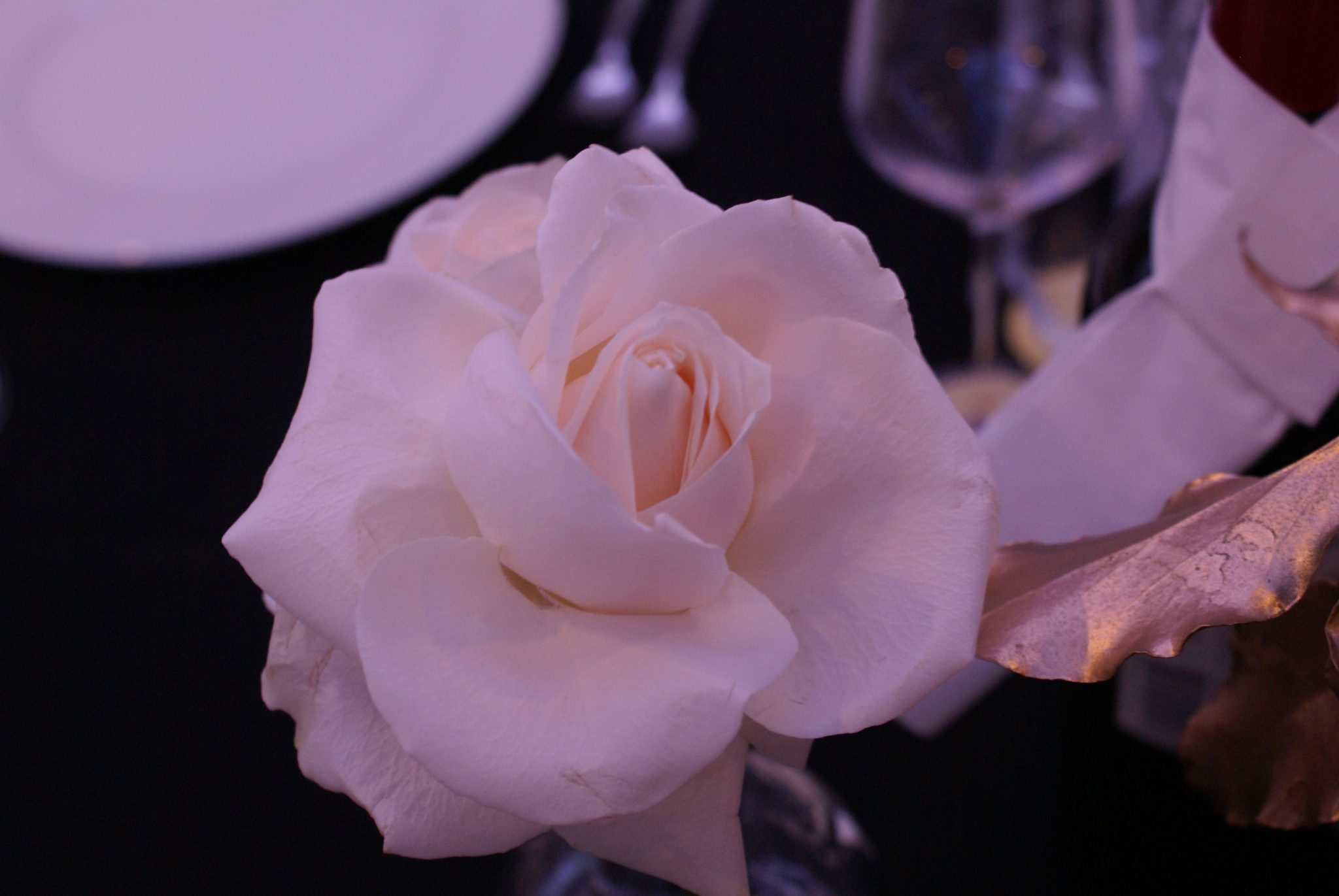 ruža vjenčanje